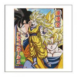 Καδρο Μουσαμα Dragon Ball Z 6951-0005