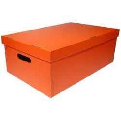 Κουτί colors Α3 Υ19x50x31εκ. Next 03382